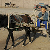 Uighur Boy in Donkey Cart - Kashgar, China