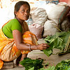 Bundling Together Betel Leaves in Khashia Village - Srimongal, Bangladesh