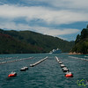 Green-Lipped Mussel Farming - New Zealand