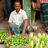 Vendor with Srimongal Limes - Bangladesh