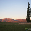 Central Otago Farmlands - South Island, New Zealand