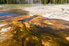 Algae and bacteria create spectacular colors at the run-off channels of a geyser in the Upper Geyser Basin of Yellowstone National Park