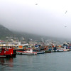 724 Kalk Bay, Cape Point Peninsula