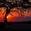 "<b>Hwange National Park, Zimbabwe</b> Sunset at <a href=""http://en.wikipedia.org/wiki/Hwange_National_Park"" target=""link target"">Hwange National Park</a>"