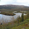 Tangle Lakes BLM Campground, Denali Hwy, 06/08/2014.