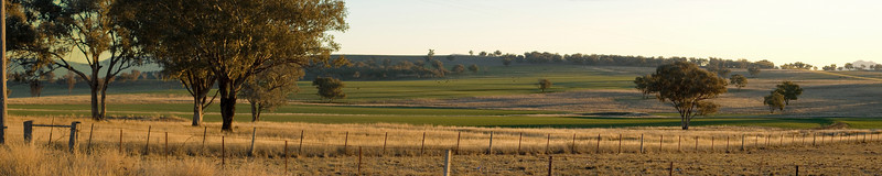 Country side at dusk<br /> Tamworth Shire<br /> New South Wales<br /> Australia - 16 Jun 2006
