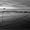 Tessellated Pavement in Monochrome - Eaglehawk Neck, TAS
