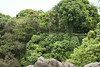 06 28 13_Hilo Falls and Botanical_4977
