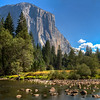 Yosemite Valley Floor Panorama