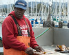 Monterey Fish Cleaning_20140806  011