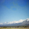 Eastern Sierra from the Owens Valley