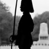Silhouette of a soldier  of the Household Cavalry on guard duty at Horse Guards Whitehall.