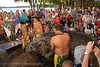 Collecting the pig at the Old Lahaina Luau