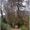 Junction of pathways - Kylemore Abbey Gardens.