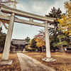 The Autumn Torii