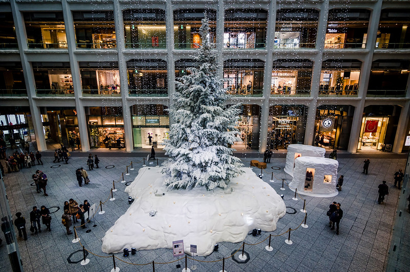Kitte Building Christmas Tree