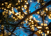 2014-12-13_Lotte_ChristmasLights-8331
