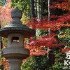 Koyo at Komyo-ji
