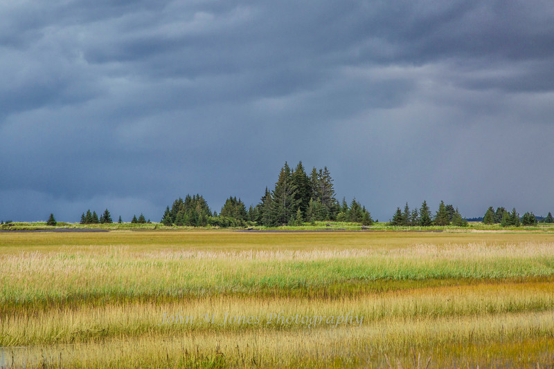 Rain Clouds over tidal meadow, Silver Salmon Creek area, Lake Clark National Park and Preserve, Alaska