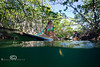 Following the Paddle Boards through the Mangroves - Mellow Ventures Key West - Photo by Pat Bonish