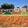 The Wall of Orange and Green, Holca, Mexico