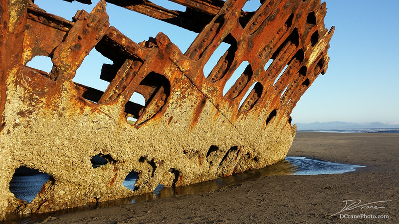 Outside hull of the shipwrecked Peter Iredale on the coast near Astoria, Oregon. The ship was sailing to the Columbia River channel from Mexico and encountered a storm on October 25th, 1906. The crew battled huge surges and strong winds in the last stretch past the Tillamook Lighthouse nearing the channel. Finally, she ran aground only four miles from her destination.  Everyone on the crew (plus two stoways) all survived and were commended for their efforts to save the ship. Most of the wreck was later salvaged and sold as scrap,  but a large section of the hull remains buried in the sand.