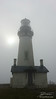 """The Yaquina Head Lighthouse immersed in fog. The lighthouse stands 93 feet tall, putting it's light 162 feet above the waters of the Pacific. It was built in 1873 and originally used a 1st-order Fresnel Lens with a 4-wick lard oil lamp. The lamp was replaced by electricity in 1933, and completely automated in 1966. The house is still lit every night to guide ships into Newport.<br /> <br /> Information courtesy of Bella Terra's """"Northwest Lighthouses - Illustrated map and guide"""""""