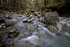 Stream on the Routeburn Track