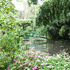 Giverny-Lilly ponds and bridge