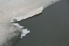 Edge of thicker ice on Pearl Lake in Timmins.