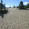 The Carcross Desert  YT