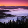 Saddle Mountain mist