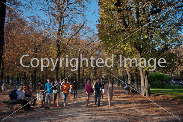 Paris, France, people Enjoying French Garden, Jardin du Luxembourg