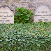 Photofreak. Auvers Sur Oise. France. Vincent Van Gogh and his brother Theo's graves.
