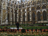 A man looks at memorials on the lawn of the Westminster Cathedral in commemoration of Remembrance Day in London, United Kingdom. Remembrance Day is celebrated Nov. 11, the date that World War I ended.(Australfoto/Douglas Engle)
