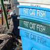 Fat Cat Fish--love the name!