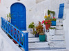 Blue Doorway with Flowers<br /> Santorini, Greece<br /> April 2006<br /> © WEOttinger, The Wildflower Hunter - All rights reserved<br /> For educational use only - this image, or derivative works, can not be used, published, distributed or sold without written permission of the owner.