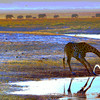 Giraffe_DV4U0886_2_crop_color-more