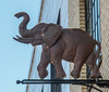 • Location - Charleston, SC<br /> • Worn out looking elephant