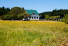 A restored pioneer farmhouse and barn located at the end of a field of wildflowers. On Waldron Island in Washington State, this organic farm runs off the electric grid.