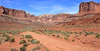 White Rim Trail Panorama