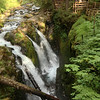 In the rainforest we hiked to Sol Duc Falls, another incredibly beautiful sight.