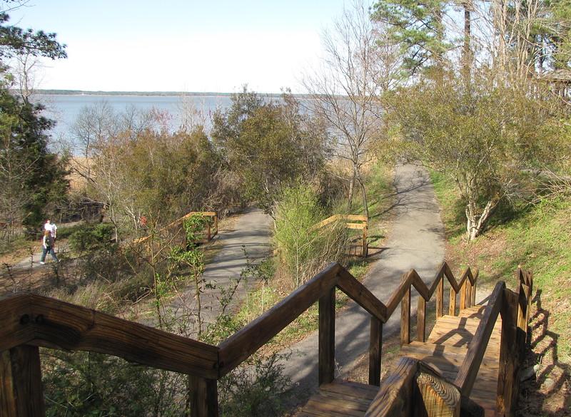 Area of the Virginia Native Plant Arboretum - York River State Park, Williamsburg