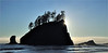 Sea stacks at Second Beach. The west coast of the Olympic Peninsula in Washington state