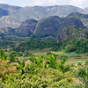 Valle de Vinales with limestone mogotes in the background, Parque Nacional de Vinales, Cuba