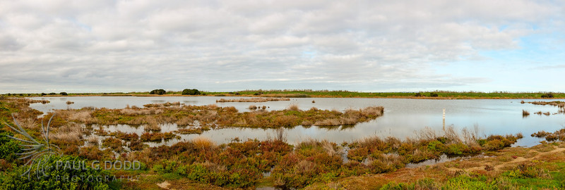 The Borrow Pits