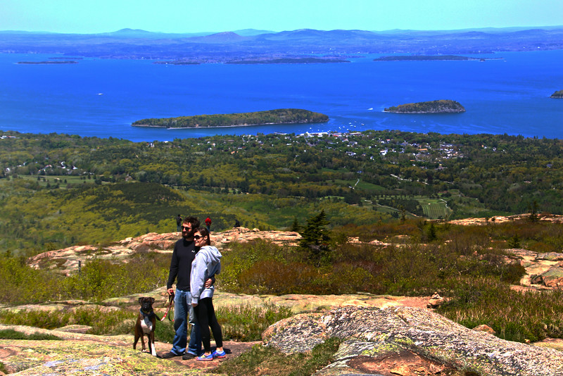 Acadia National Park, Cadillac Mountain,Couple with Dog