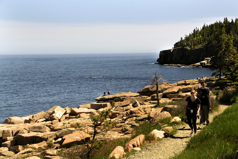 Acadia National Park, Hiking Path Around Coves