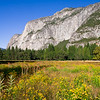 Panoramic view of El Capitan from the meadows. Yosemite valley, Yosemite National Park, California, USA.
