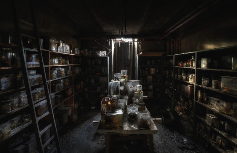 "The Basement - The infamous ""Horror Labs"". A room stuffed with lungs, hearts, intestines and animal heads partly submerged in formaldehyde."